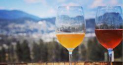 Πορτοκαλί κρασί, η νέα, ψαγμένη τάση οινοποσίας -Ιδιαίτερη γεύση, οι ελληνικές ετικέτες