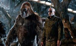 Το καλοκαιρινό σινεμά ξαναζεί: 5 ταινίες που δεν πρέπει να χάσεις τον Ιούλιο